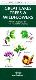 Edible Wild Plants: A Folding Pocket Guide to Familiar North American Species