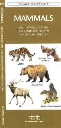 Trees An Introduction to Familiar North American Species