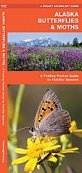 Alaska Butterflies & Moths An Introduction to Familiar Species