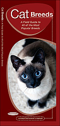 Cat Breeds An Introduction to 40 Popular Breeds