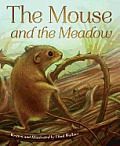 Mouse & the Meadow