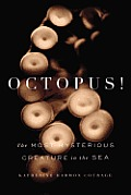 Octopus The Most Mysterious Creature in the Sea