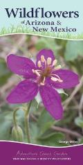 Wildflowers of Arizona & New Mexico: Your Way to Easily Identify Wildflowers
