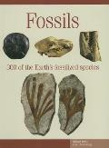 Fossils 300 of the Earths Fossilized Species