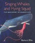 Official Rules Of Baseball Illustrated Updated & Revised