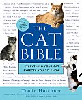 Cat Bible Everything Your Cat Expects You to Know