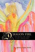 Dragon Fire Secrets Of The Last Dragon