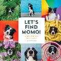 Let's Find Momo!: A Hide and Seek Board Book