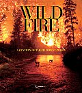 Wildfire Reader A Century of Failed Forest Policy