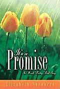 It's A Promise