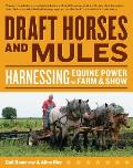 Draft Horses & Mules Harnessing Equine Power for Farm & Show