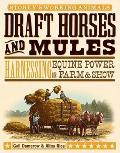 Draft Horses & Mules