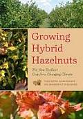 Growing Hybrid Hazelnuts The New Resilient Crop for a Changing Climate