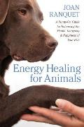 Energy Healing for Animals A Hands On Guide for Enhancing the Health Longevity & Happiness of Your Pets
