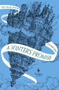 Winters Promise Book Mirror Visitor Quartet Book 1