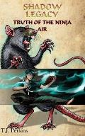 Truth of the Ninja - Air