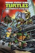 Teenage Mutant Ninja Turtles: New Animated Adventures, Volume 1