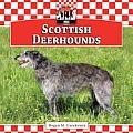 Scottish Deerhounds
