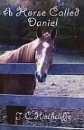 A Horse Called Daniel