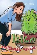 Kito, the Christmas Cactus