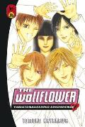 Wallflower 36