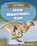 How Mammals Run