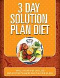 3 Day Solution Plan Diet: Track Your Diet Success (with Food Pyramid and Calorie Guide)