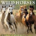 Wild Horses 2017 Wall Calendar