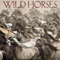 Wild Horses 2018 Wall Calendar