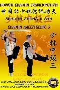 Shaolin Mittelstufe 3