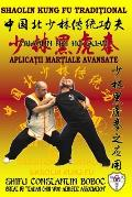Shaolin Hei Hu Quan - Boxul Tigrului Negru de la Shaolin