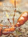 Brim Children's Playtime Coloring Book: Black Ant And Red Ant