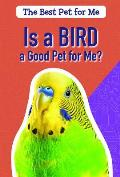 Is a Bird a Good Pet for Me?