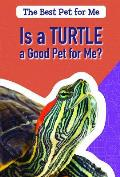 Is a Turtle a Good Pet for Me?