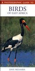 Photographic Guide To Birds Of East Africa