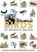 Bill Oddie's Birds of Britain & Ireland