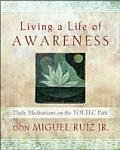 Living a Life of Awareness Daily Meditations on the Toltec Path