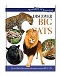 Wonders of Learning: Discover Big Cats