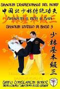 Shaolin Tradizionale del Nord Vol.3: Livello di Base - Dai Shi 2