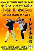 Shaolin Tradizionale del Nord Vol.4: Livello di Base - Dai Shi 3