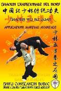 Shaolin Tradizionale del Nord Vol.13: Shaolin Wu Bu Quan - Applicazioni Marziali Avanzate