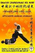 Shaolin Tradizionale del Nord Vol.16: Shaolin Qing Long Quan - Applicazioni Marziali Avanzate