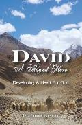 David: A Flawed Hero: Developing a Heart for God