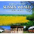 Portrait of the Sussex Weald