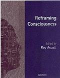 Reframing Consciousness