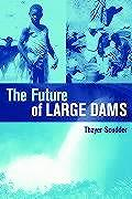 The Future of Large Dams: Dealing with Social, Environmental, Institutional and Political Costs