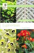 RHS Euphorbias