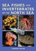 Sea Fishes & Invertabrates of the North Sea & English Channel