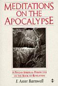 Mediations On The Apocalypse