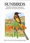 Sunbirds A Guide to Sunbirds Flowerpeckers Spiderhunters & Sugarbirds of the World